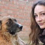 Цена собачьей жизни