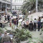 В Таганроге начался марафон программистов под пальмами