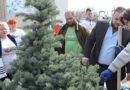 Зелёный подарок от «Полимерпрома»