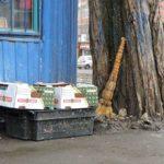 Как выгодно заключить «договор на мусор»