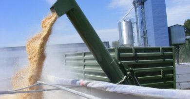 В Таганроге построят новый зерновой терминал