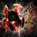 «Арбузный взрыв», «Летний чемпионат ползунков» и День рождения