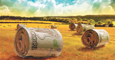 Аудиторы нашли в Донском Минсельхозпроде нарушения на 66 миллионов рублей